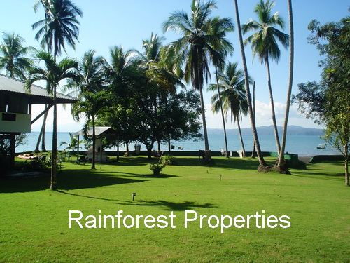 Osa Peninsula Lodge For Sale
